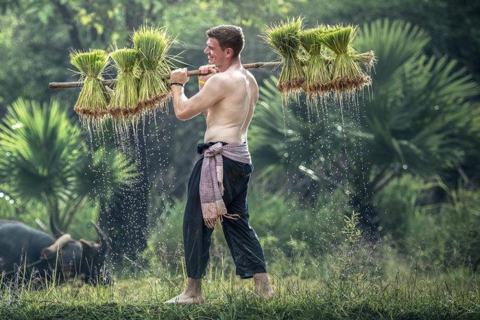 Esencia de Vietnam y Camboya