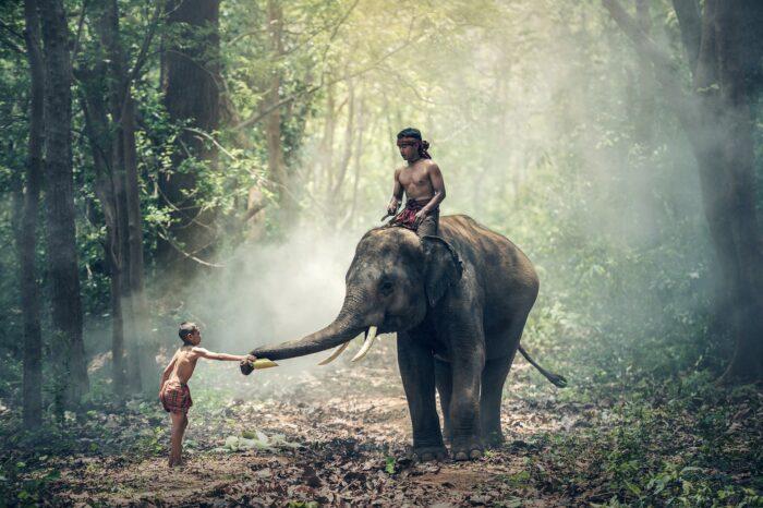 Esencia de Vietnam, Camboya y Phu Quoc